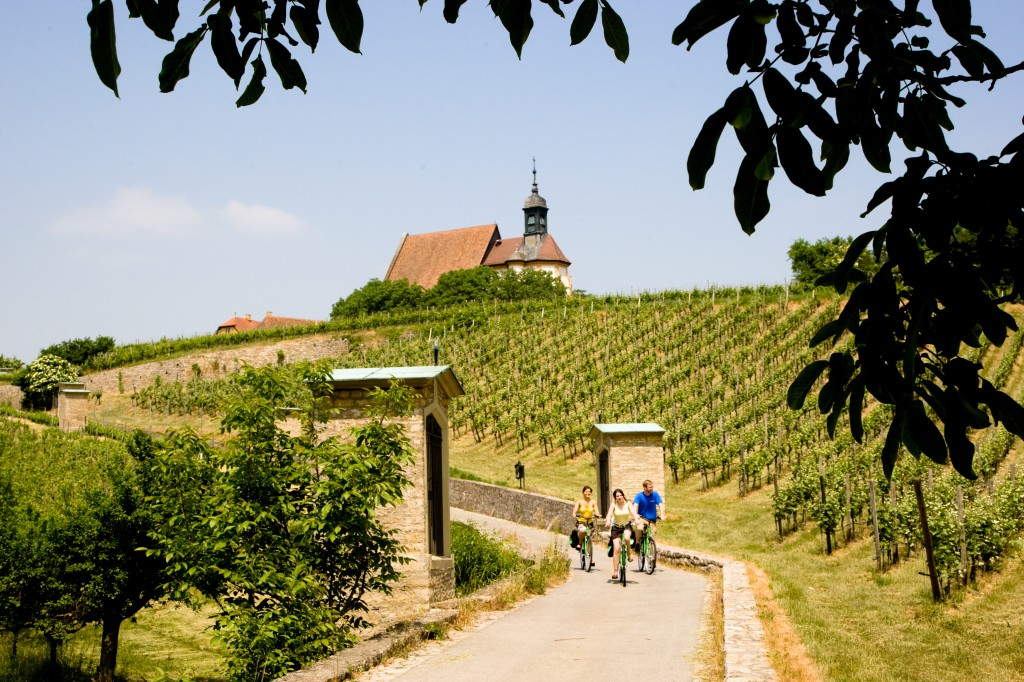 Landschaftsbild am Mainradweg