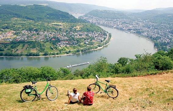 Ausblick vom Rheinradweg